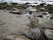 Composition of stones on the shore.
