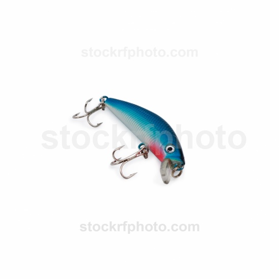 Fish fishing bait.