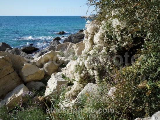 Autumn coast of the Caspian Sea.