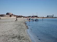People on the sandy seashore.